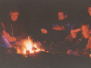1993-07-01-zomerkamp-rowans