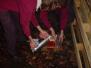2004-01-17-stoken-rowans