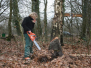 2007-01-27-bosbouw-allen