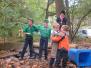 2008-10-18-fotostrip-nest-grijs-welpen