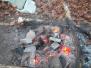 2008-11-08-sauna-rowans