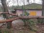 Storm schade