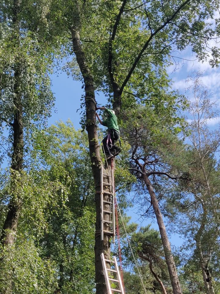Scouting Impeesa Amersfoort overvliegen kabelbaan